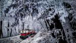 Facebook: mágicos paisajes de Hungría cubiertos de hielo - Noticias de el tren de la codicia
