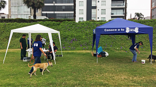El toldo de la izquierda es donde Groomers instaló a su equipo veterinario durante los eventos de Conoce a tu WUF, en el malecón de Miraflores.