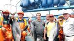 """SNI: """"Desembarco de atún crecerá 80% este año en el Perú"""" - Noticias de roberto miranda"""