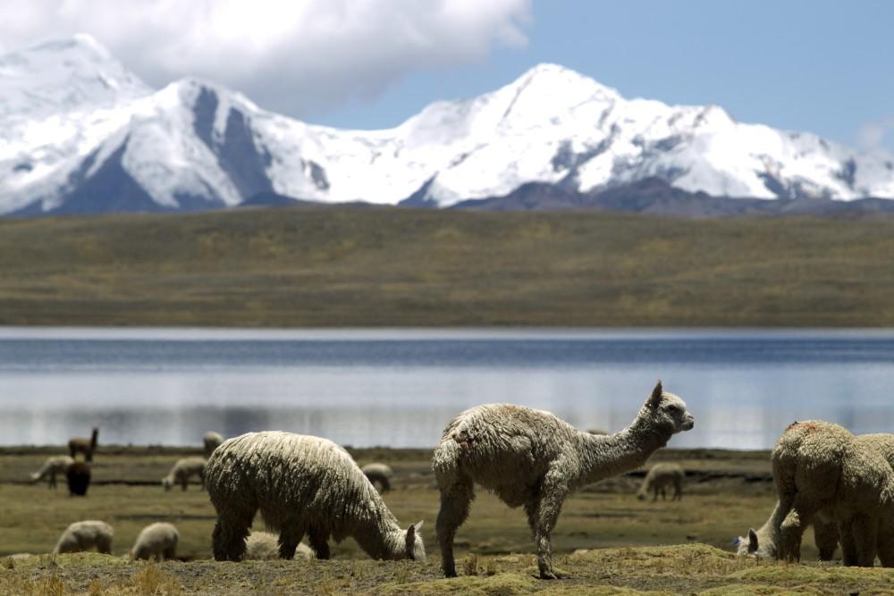 11 DE NOVIEMBRE DEL 2010LOS NEVADOS DEL CUSCO ESTAN SUFRIENDO EL DESHIELO EN SUS GLACIARES DEBIDO AL CALENTAMIENTO GLOBAL.FOTO MIGUEL BELLIDO EL COMERCIO