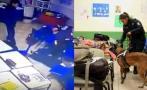 Niño que atacó colegio dijo a compañeros que llevaría un arma