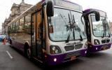 Buses del corredor morado circulan por la Av. Abancay desde hoy