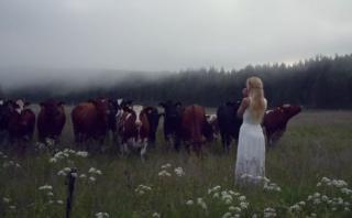 YouTube: el bello canto pastoril capaz de 'hechizar' al ganado