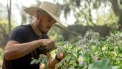 Matías Cillóniz y una cocina que prioriza el consumo consciente