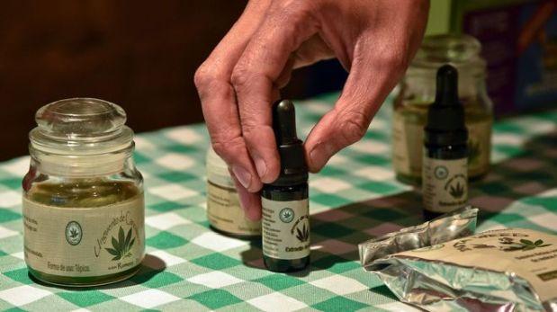 Gobierno presentará proyecto para legalizar marihuana medicinal