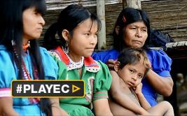 Hambre y miedo: la violencia en la selva de Colombia [VIDEO]