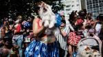 Brasil: El desfile canino del carnaval de Río de Janeiro - Noticias de carnavales