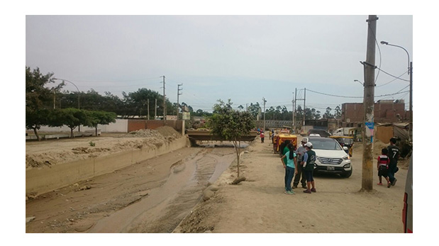 Animales víctimas de huaycos recibieron asistencia médica