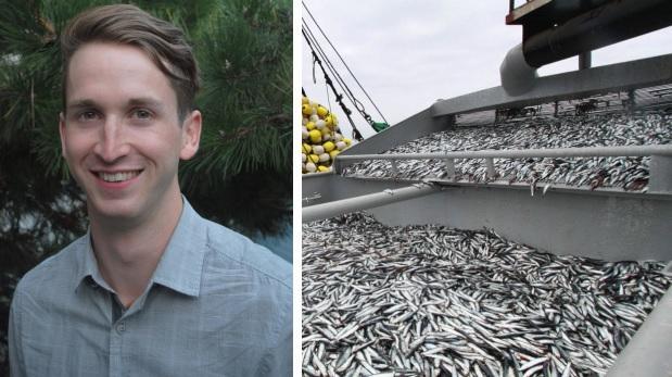"""""""Perú tiene la oportunidad de redirigir pesca a consumo humano"""""""