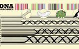 Un código de barras para monitorear la biodiversidad