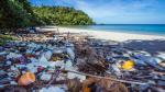 Por qué viajar en auto pone en peligro la vida marina - Noticias de barco atrapado
