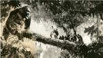 King Kong: su evolución en la pantalla grande - Noticias de kong: skull island
