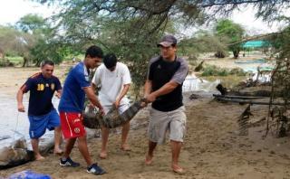 Lambayeque: capturan a 4 reptiles que escaparon de zoológico