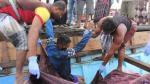 Tragedia en el mar Rojo: Asesinan a tiros a 33 refugiados - Noticias de guantánamo