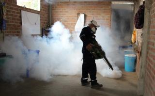 Piura: casos de dengue incrementan a 246 tras lluvias