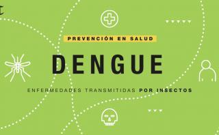 Síntomas y prevención de enfermedades transmitidas por insectos