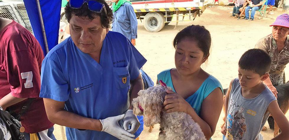 WUF, veterinarios y empresas asisten a animales afectados