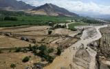 Minagri extenderá seguro agrario catastrófico a todo el país