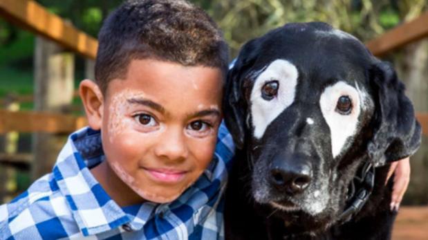 Niño sale de su depresión gracias a este perro
