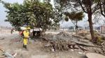 Fumigan viviendas de Huachipa ante amenazas de enfermedades - Noticias de municipalidad de chosica