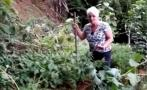 Ancianas hallaron algo inesperado al grabar su huerta [VIDEO]