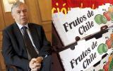 Chile mira al Asia como región clave para sus exportaciones
