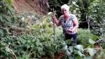 Ancianas hallaron algo inesperado al grabar su huerta [VIDEO] - Noticias de red uno