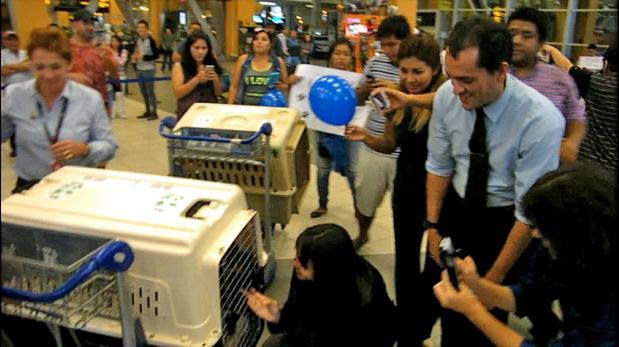 Venezolanos se reúnen con 3 de sus 5 perros en Lima