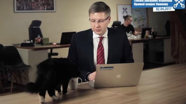 YouTube: discurso de alcalde fue interrumpido por un gato