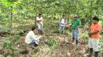 Pasco: más de 700 hectáreas de suelos fueron recuperados - Noticias de fausto brambilla