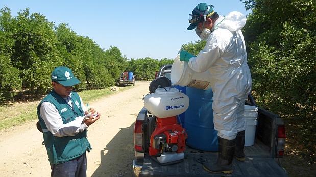 Senasa monitorea plagas ante El Niño costero