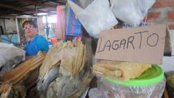 Aumenta consumo de lagarto por Semana Santa en Tarapoto