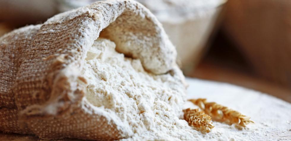 ¿Son importantes las harinas para el consumo humano?