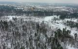 Rusia: bosques de Moscú peligran por la presión inmobiliaria