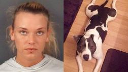 EE.UU.: Veterana de guerra asesina a tiros a su mascota