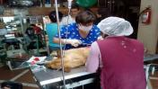 Huancayo: lanzan un perro desde el tercer piso de municipalidad