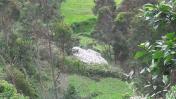 Reportan 5 heridos por accidente de helicóptero del Ejército