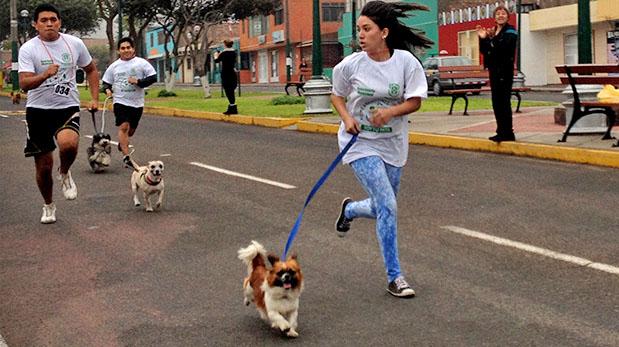 [Foto] Perrotón busca difundir tenencia responsable en Ventanilla