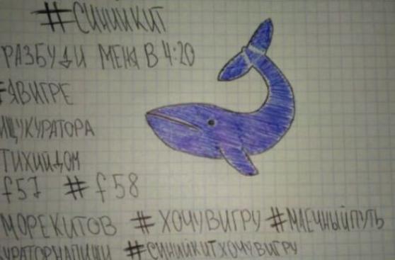 """[BBC] """"La ballena azul"""", el juego que alarma a las autoridades"""