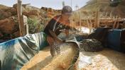 FP plantea que minería ilegal no sea crimen organizado