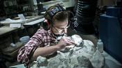 Expertos extraen ADN prehistórico sin la necesidad de fósiles