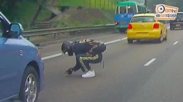 Facebook: motociclista salvó a gatito de ser atropellado