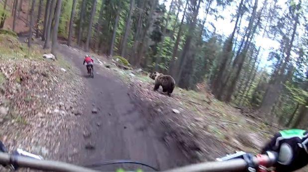 Ciclistas en pleno descenso son perseguidos por un oso — Youtube
