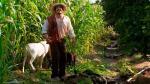 """""""De vuelta al barrio"""": los mejores momentos en imágenes - Noticias de teddy guzman"""