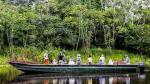 Tambopata y Pacaya Samiria: Guía básica para explorarlas - Noticias de caimanes