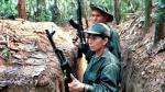 Presuntos disidentes de FARC atentan contra camión militar - Noticias de marina armada
