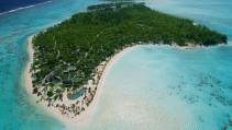 La isla de Marlon Brando