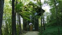 ¡Una iglesia en el bosque!