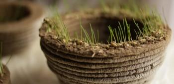 Tu jardín impreso en 3D