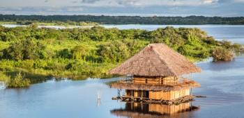 5 razones para viajar la selva